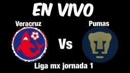 VERACRUZ VS PUMAS EN VIVO LIGA MX 2018