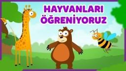 Hayvanları Tanıyalım - Hayvanlar ve Sesleri - Çocuklar İçin Eğitici Eğlenceli Türkçe Çizgi Film