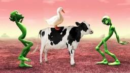 Renkleri Öğreniyorum Hayvanlar Şarkısı - Gerçek Hayvan Sesleri - Hayvanları Öğreniyoruz